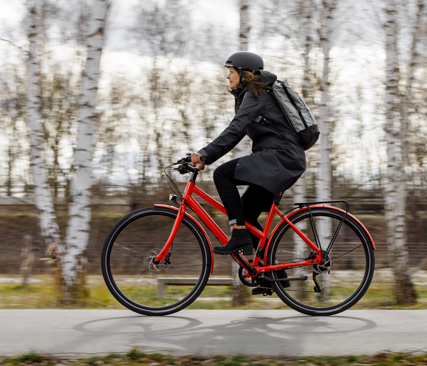 Female Ampler rider on Stellar during colder weather